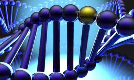 ¿Qué son las pruebas genéticas?