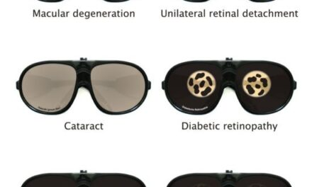 Cómo ve un paciente con afectación visual