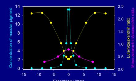 Importancia de la medida del pigmento macular en la detección precoz de la DMAE