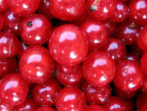 Degeneración Macular: los mejores alimentos para prevenirla