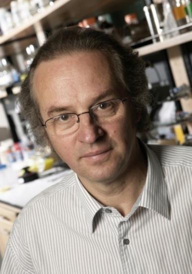 Células madre y terapia génica contra la DMAE húmeda