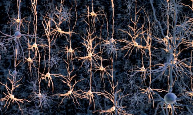 Qué es optogenética