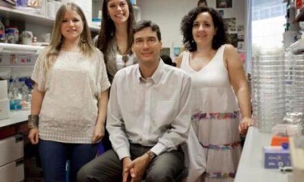 Un trabajo español, descubrimiento del año en medicina regenerativa