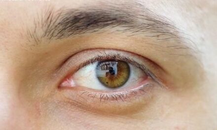 Pequeño implante para pacientes con degeneración macular