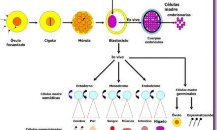 La Alianza para la Medicina Regenerativa anuncia la introducción de una Ley de Promoción de la medicina regenerativa de 2014 en el senado de Estados Unidos