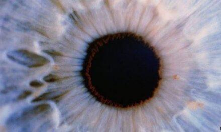 """Las células de los ojos de los fallecidos """"pueden dar visión a los invidentes"""""""