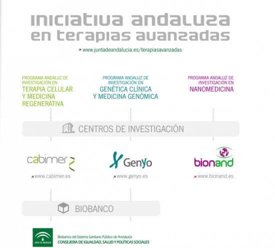 Los profesionales de la sanidad andaluza presentan un total de 337 ensayos clínicos con medicamentos a lo largo de 2013