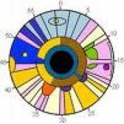Especialistas en oftalmología analizan los últimos avances en el abordaje de las patologías de la retina