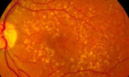 Ensayos conjuntos del IOBA y el Clínico de Valladolid para tratar enfermedades oculares