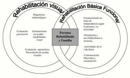 Rehabilitación visual: formas de apoyo para pacientes con DMAE