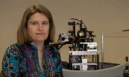 El cerebro hace de 'cíclope' para compensar las diferencias visuales entre los ojos