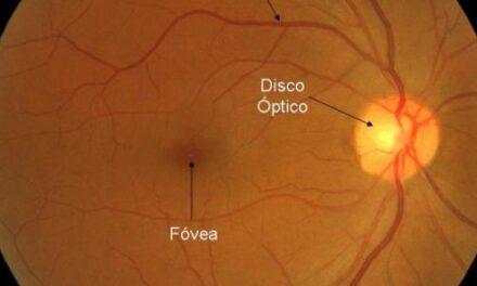 Científicos crean células madre de la retina a partir de células madre