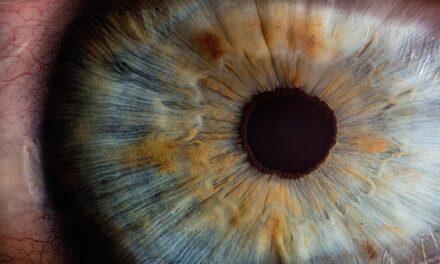 Discapacidad visual y función de los filtros selectivos