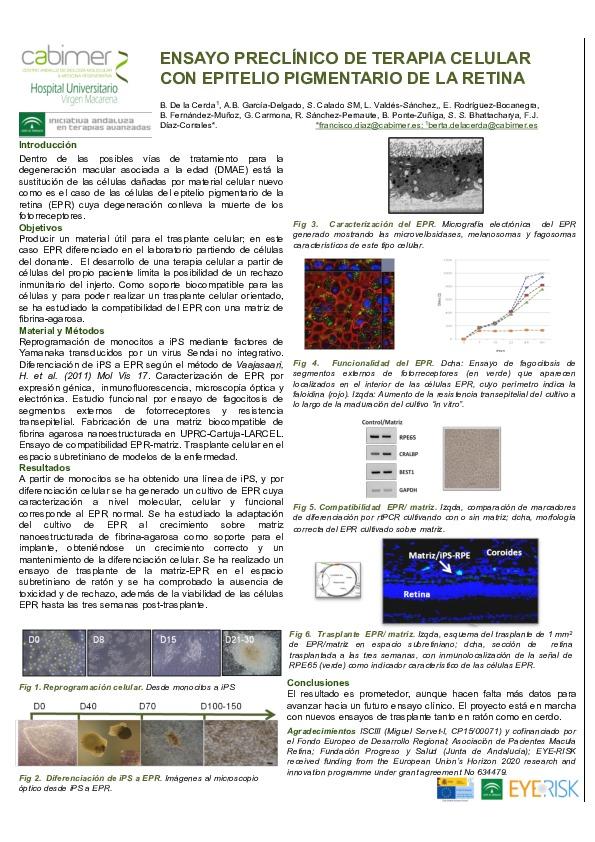 terapia-genica-DeLaCerda-cabimer-macula-retina