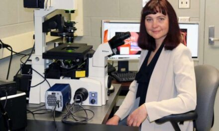 Un hallazgo inesperado puede evitar la retinopatía diabética