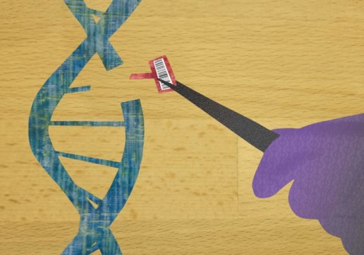 Cirugía del genoma para patologías oculares