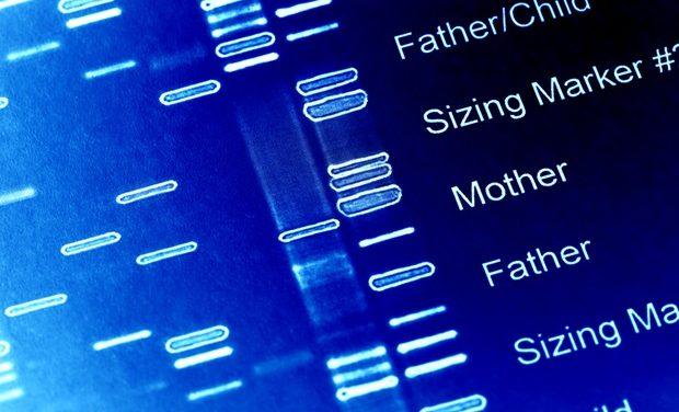 Identifican 161 factores genéticos de la miopía