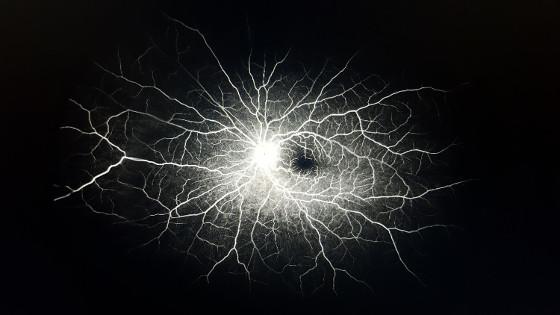 Fluid Intelligence, una aplicación móvil de IA para enfermedades retinianas