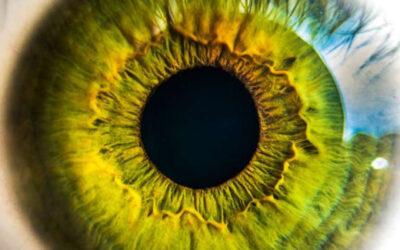 Nueva generación retinas artificiales con materiales 2-D