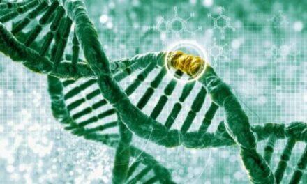 Estudio de asociación del genoma completo y DMAE
