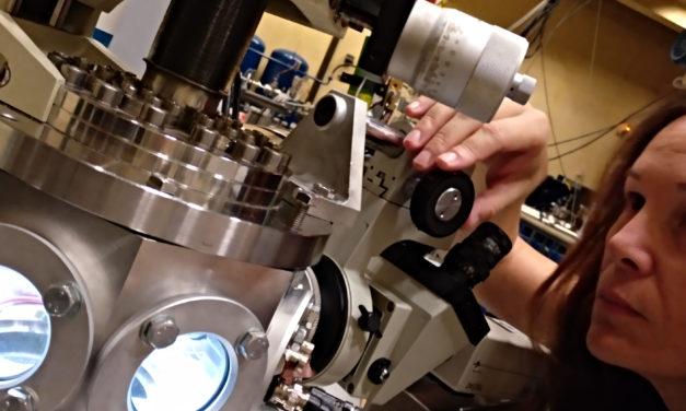 Estudio en DMAE de Acumulación de Metales-Traza en Modelos Celulares y Animales