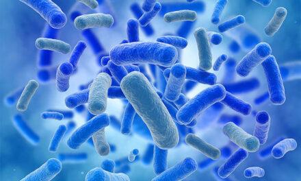 Microbioma y degeneración macular relacionada con la edad (DMAE)