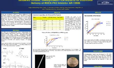 Implante AR-13503 con ROCK/PKC para DMAE y Edema macular