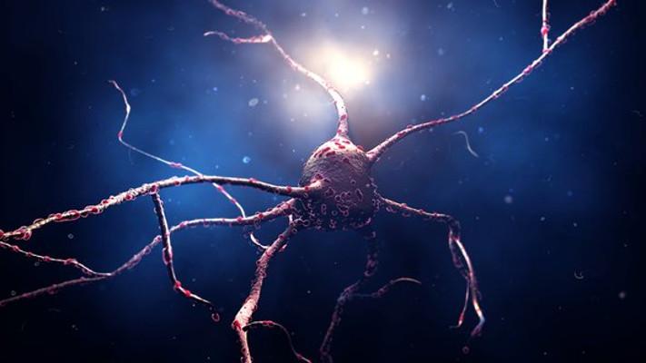 Implantes de retina con células madre para DMAE seca