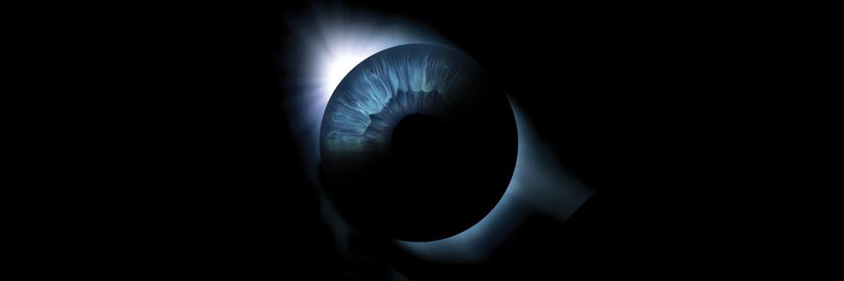 Patologías degenerativas de la retina y posibles terapias