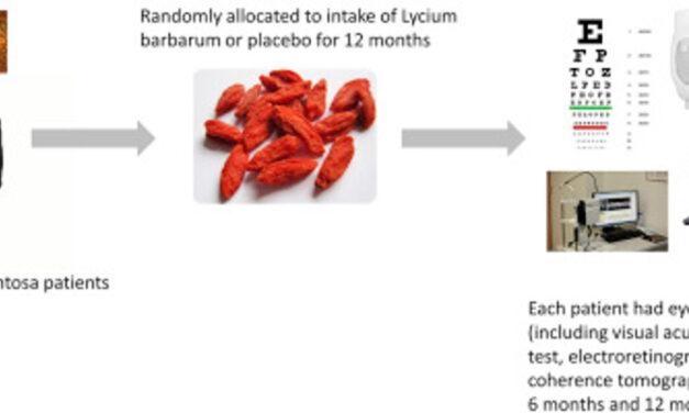 Suplemento de Goji berry retrasa degeneración conos en Retinosis Pigmentaria