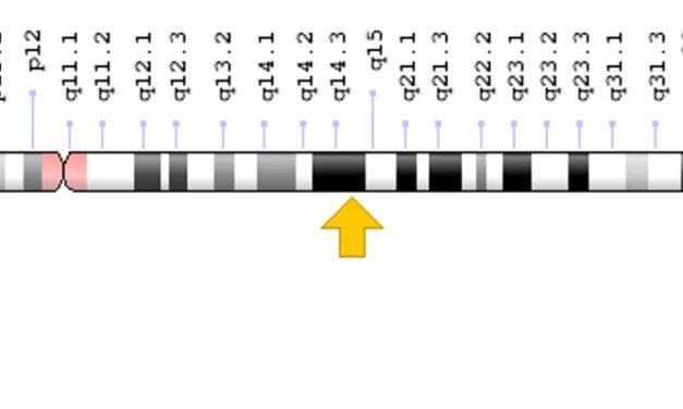 Gen ADGRV1