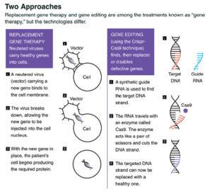 tecnología CRISPR