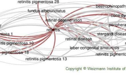Ensayo STREAM con EPR derivado de hESC para retinosis pigmentaria causada por mutación monogénica