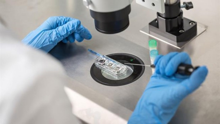 Datos positivos para la terapia celular hRPC de ReNeuron para Retinosis Pigmentaria