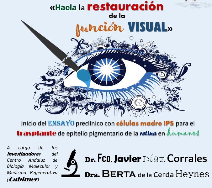 Hacia la restauración de la función visual