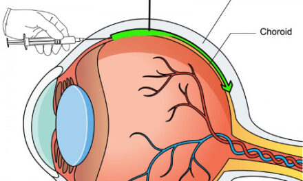 Terapia génica ocular de una forma más fácil y segura