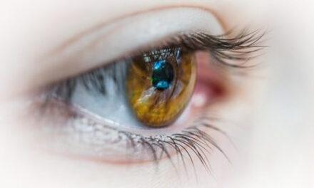 Investigadores señalan un nuevo objetivo terapéutico potencial para las enfermedades oculares