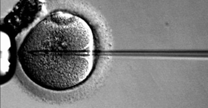 Uso de microagujas para administrar la terapia génica en las enfermedades de la retina