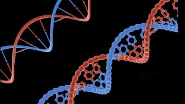 Visible Genomics inicia una prueba de ADN para la degeneración macular relacionada con la edad (DMAE)