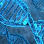 ReNeuron anuncia primer ensayo de terapia celular hRPC para Retinosis Pigmentaria en España