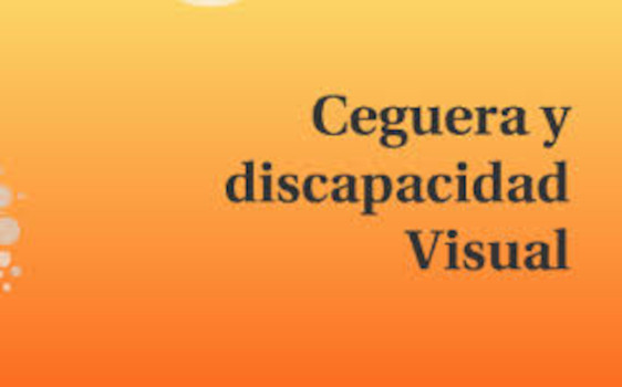 Ceguera y discapacidad visual