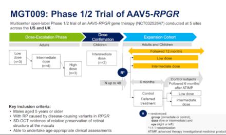 La terapia génica AAV5-RPGR para la retinosis pigmentaria ligada al cromosoma X invierte la progresión natural de la enfermedad